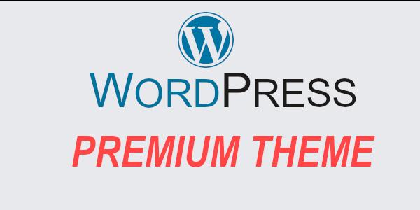 wordpress premium theme kyo jaruri hai